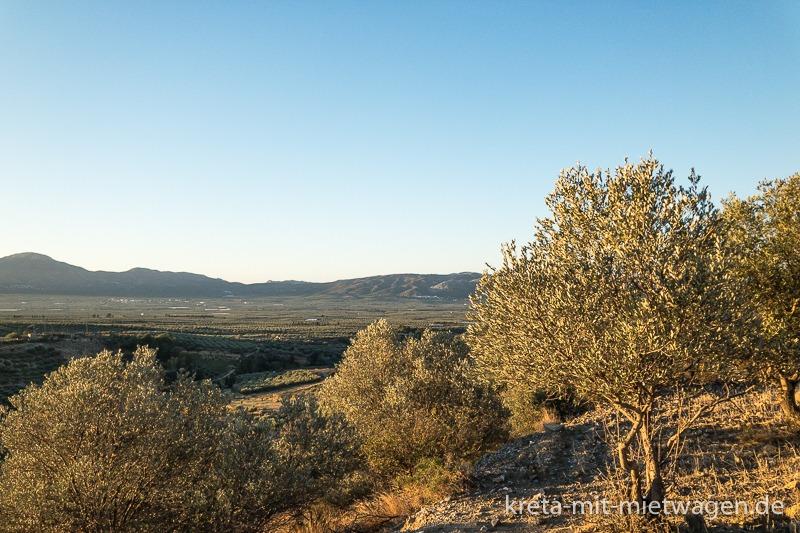 Messara bei Sonnenaufgang